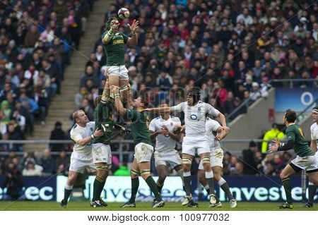 TWICKENHAM LONDON, 27 NOVEMBER 2010. South Africa's Victor Matfield  wins a lineout during the Investec International match between England and South Africa at Twickenham Stadium Middlesex England.