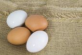 Organic Duck eggs vs Chicken eggs and preserved egg poster