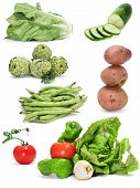a collage of different vegetables on a white background poster
