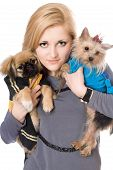 Portrait of lovely blonde with two dogs. Isolated poster