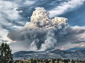 Forest Fire Smoke Photo-Art