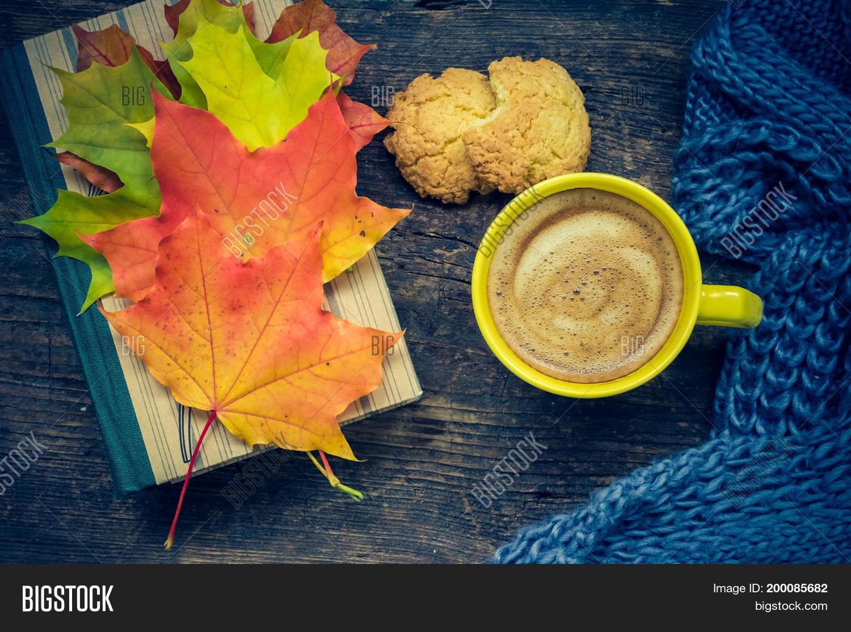 Autumn Still Life Image Photo Free Trial Bigstock