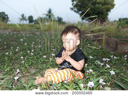 a asian Kid sitting in flowers