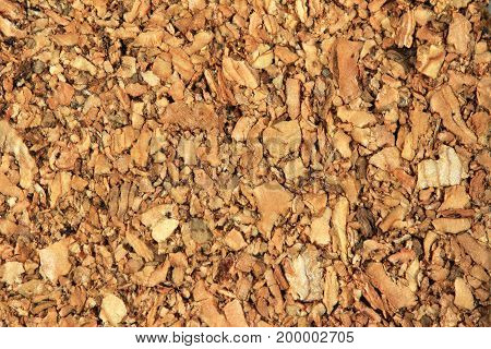 Cork Texture and Background Close up view