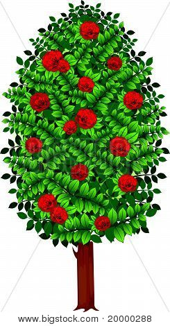 Vector tree with roses