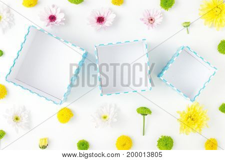 Open blue gift boxes with different chrysanthemums on a white background. Flat lay. Birthday background