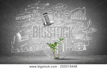 Lightbulb with green plant inside placed against sketched business plan information on grey wall. 3D rendering.