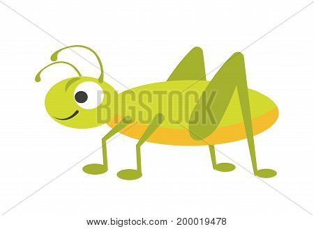 Funny vigorous grasshopper with big eye, small smile, curved antennae, yellow chest, green back and long springy legs isolated on white background. Friendly character cartoon vector illustration.