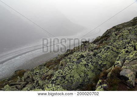 The Alps, the country of Switzerland, the area of the Aletsch Panoramaweg.