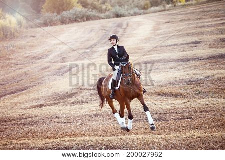 Young woman riding on brown horse wearing helmet in meadow