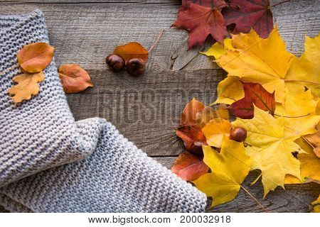 Autumn still life. Dry leaves warm scarf on wooden board. Top view and copy space, vintage style. Flat lay.