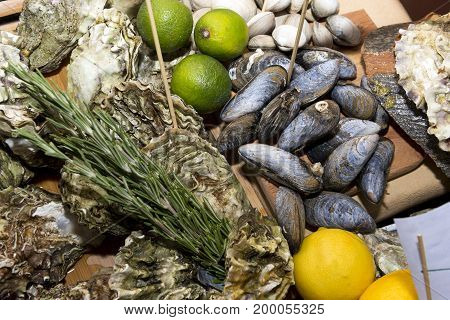 oysters clams in shells seafood mussels lime lemons meal
