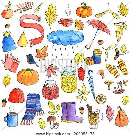 autumn doodle set, watercolor isolated hand drawn elements