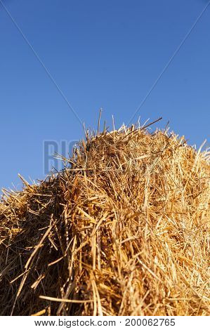 Haystack on the blue sky background. Vertical.