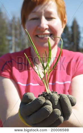 Gardener with plant