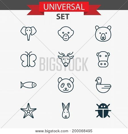 Nature Icons Set. Collection Of Goose, Trunked Animal, Beetle And Other Elements