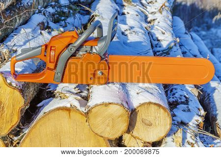 Chainsaw on pile of logs in winter day .