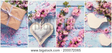 Collage from photos with pink sakura flowers on blue wooden background. Spring flowers. Love theme. Decorative heart is symbol love wedding. Birds are symbol love family wedding. Wrapped box with present. Site header. Top view.