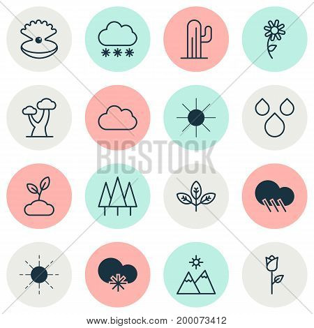 Harmony Icons Set. Collection Of Plant, Sunshine, Sprout And Other Elements