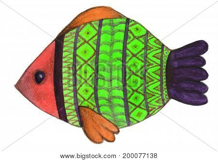 Fish painted with a watercolor and colored pencils
