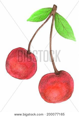 Cherry painted with a watercolor and colored pencils