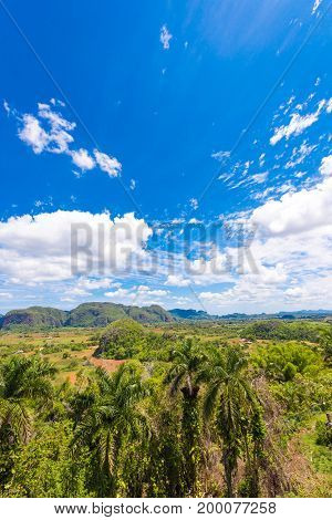 View Of The Vinales Valley, Pinar Del Rio, Cuba. Copy Space For Text. Vertical.