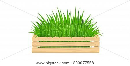 Wooden box with green grass. Gardening Equipment. Isolated white background. Vector illustration.