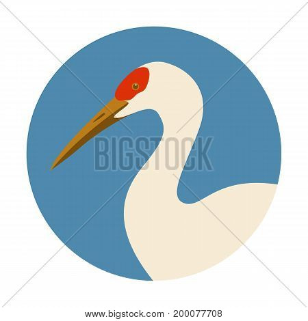 crane head vector illustration profile side flat