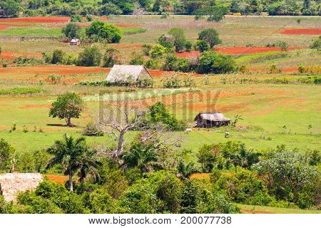 View of the Los Acuaticos Vinales Pinar del Rio Cuba. Copy space for text