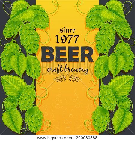Beer poster with cones and leaves with a plant of hops. Vector illustration. Text composition. Hand drawing.