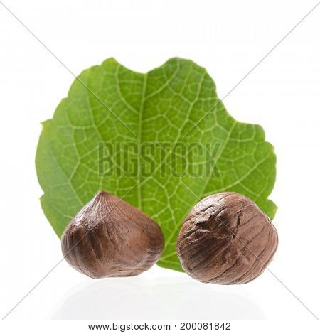 Hazelnuts Close up