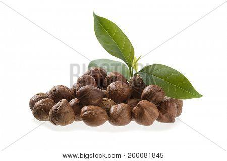 Heap of Hazelnut with Leaves