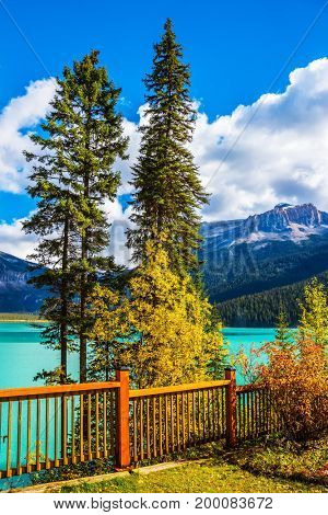 Yoho National Park, Canada. Camping and coniferous forest. The concept of eco-tourism and adventure tourism. Wooden fence on the lake promenade
