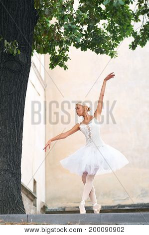 Graceful young ballerina posing elegantly outdoors performing under the big tree dancing gracefully.