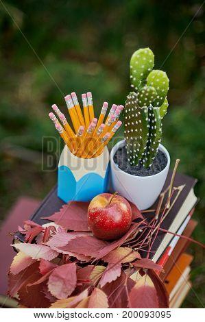 school equipment pencils book globe standing outdoor