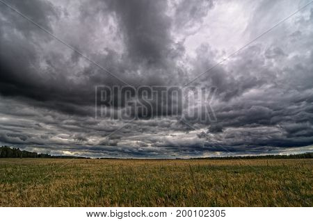 Autumnal field under dark dramatic thunderstorm sky.