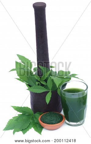 Medicinal Vitex Negundo leaves with extract juice