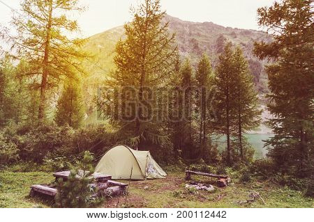 Green Tents Are In The Green Misty Forest