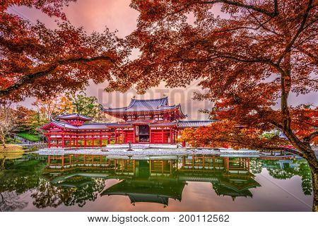Uji, Kyoto, Japan at Byodoin Temple during autumn season.