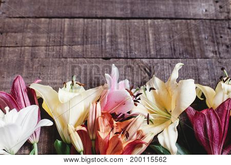 Beautiful Colorful Lily Flower On Rustic Wooden Background. Gorgeous Bloom Lilies On Rustic Wood Bac