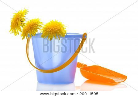 Dandelions In A Children's Bucket