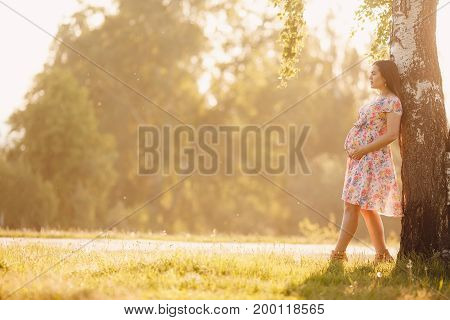 pregnant girl in a light dress is walking around the park leaning against a tree. Concept maternity, pregnancy, childbirth, a healthy walk in the park, nature help. Sunset
