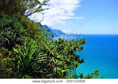 Rugged tropical mountains with a lush green forest meeting the sea taken at the Napali Coast in Kauai, HI