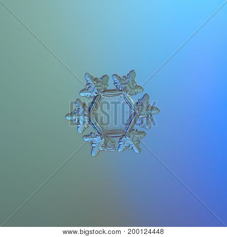 Real snowflake macro photo: small star plate snow crystal with six short broad arms with glossy surface and large, flat central hexagon. Snowflake glittering on blue gradient background in cold light.