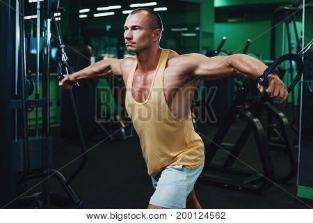 Brutal strong bodybuilder athletic man pumping up muscles workout bodybuilding concept background - muscular bodybuilder handsome men doing exercises in gym