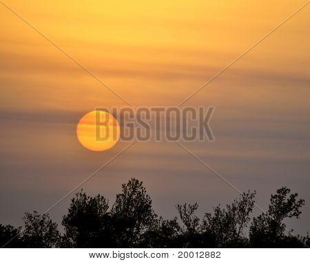 Lowly Sunset
