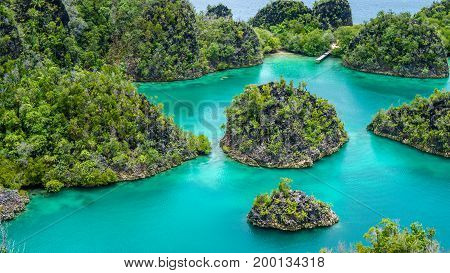 Group of Painemo Island surrounded by Blue Lagoon, Ocean, Raja Ampat, West Papua, Indonesia.