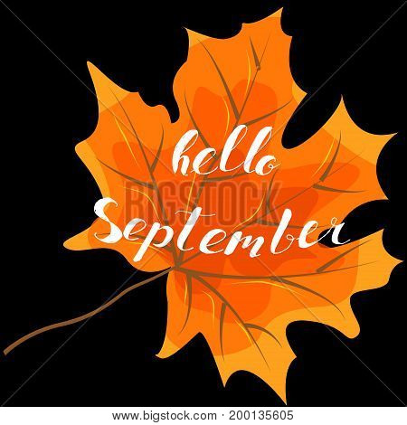 September hello hand lettering quotes.Modern motivation calligraphy typography for the poster invitations greeting cards.Vector design lettering