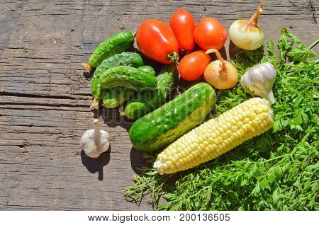 Fresh vegetables and herbs cucumbers tomatoes corn onion and garlic on old wooden Board