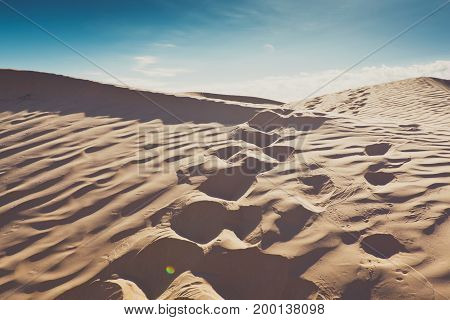 Small sand barkhans with grass at the sunrise. Desert in arab emirates. View with bush and footprint in front
